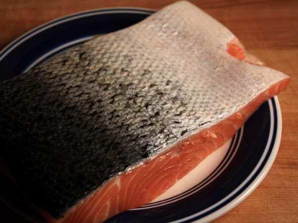 Fresh Salmon on Plate, Skin Side Up