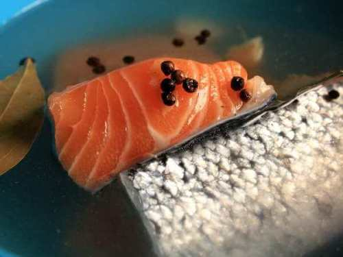 Salmon Fillets In Brine Containing Peppercorns, Bay Leaf and Garlic