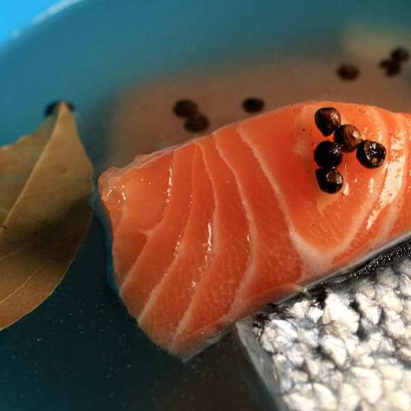 Salmon Fillets In a Brine Recipe Containing Salt, Sugar, Garlic, Peppercorns and Bay Leaves
