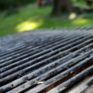 Dirty Grill and Smoker Grates Contaminate Food, and Negatively Impact Flavor