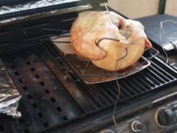 Gas Grill Smoked Turkey